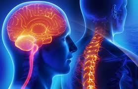 SRI SAI Superspeciality Hospital is Running Neurology department with a belief to provide Best Neurological care.