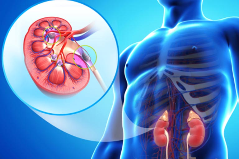 Nephrology department is providing 24 Hrs. Dialysis Services.