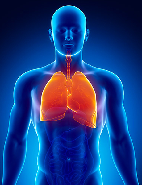 Pulmonology provides state-of-the-art care for respiratory diseases.