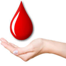 Blood Bank department is equipped with Component Therapy Product & Apheresis faculty in moradabad.