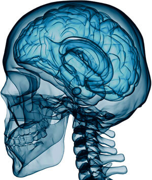 Neurosurgery well equipped with all the latest facilities for management of Complex Spinal and Cranial Cases.