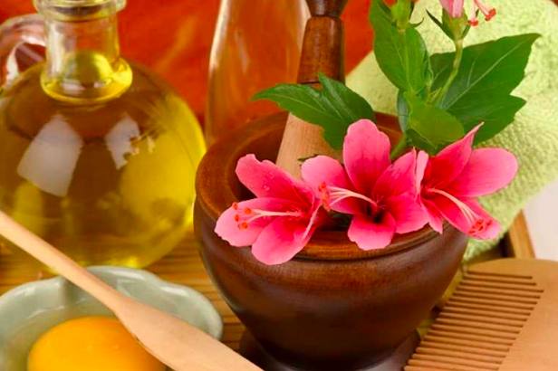 DIY Hibiscus Hair Masks for Beautiful and Silky Hair